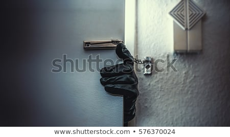 burglar holding tool stock photo © ra2studio