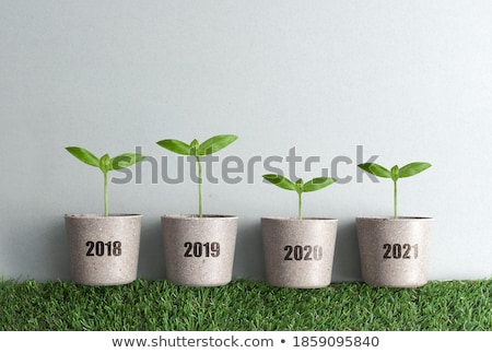 Business genezing grafiek jaar hand tekening Stockfoto © ivelin