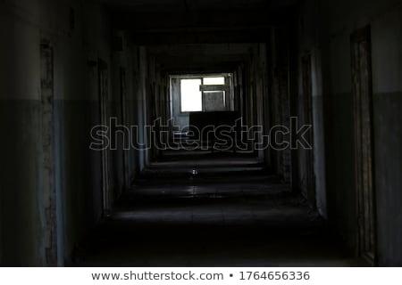 Vandalismo abandonado edifício banheiro facilidade velho Foto stock © lovleah