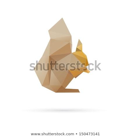 Mókus logo stilizált ikon vektor felirat Stock fotó © blaskorizov