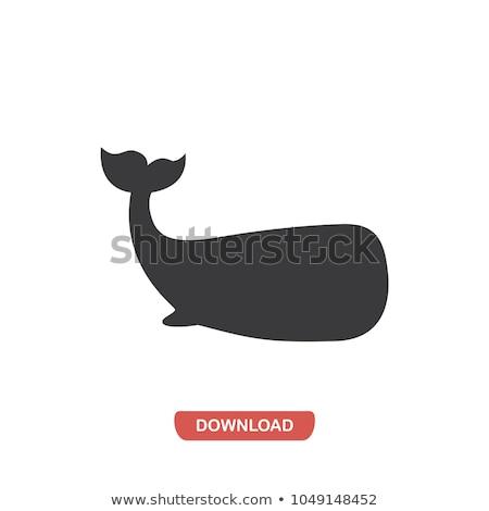 baleine · queue · eau · vague · logo · étiquette - photo stock © blaskorizov