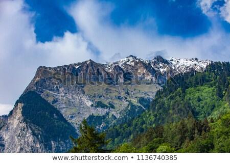 アルプス山脈 スイス 表示 空 自然 風景 ストックフォト © boggy