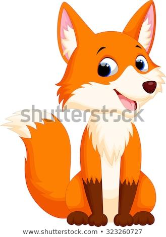 cute · brun · Fox · illustration · souriant · blanche - photo stock © mumut