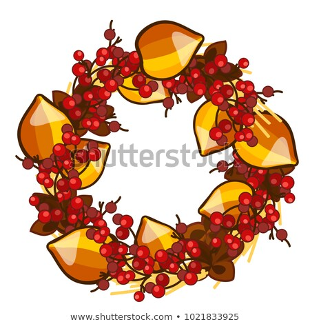 A decorative wreath of dried fruit of physalis and red berries of holly isolated on white background Stock photo © Lady-Luck