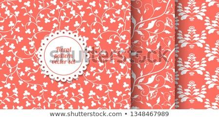 Colección sin costura de coral rosa floral patrones Foto stock © Iaroslava