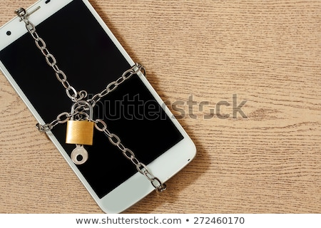 Secure Privacy Data in Internet. Cell Phone on Colorful Background. Stock photo © tashatuvango
