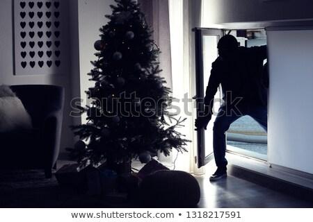 Scassinatore casa finestra vista posteriore uomo vetro Foto d'archivio © AndreyPopov
