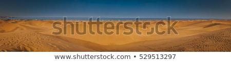 Arenoso paisagem reserva deserto naturalismo Foto stock © vapi