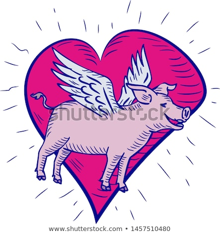 Pig With Wings Flying Heart Doodle Stock photo © patrimonio