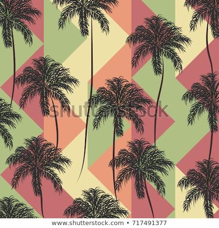 Flamingo patroon vector vintage retro textuur Stockfoto © frimufilms