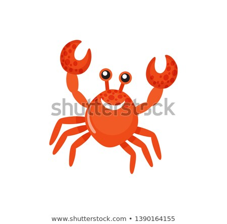 Sea Animal with Raised Claws, Smiling Crab Vector Stock photo © robuart