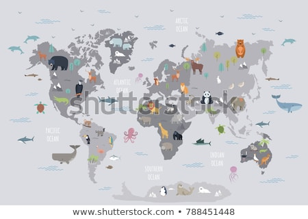 animals on world map flat vector illustration stock photo © decorwithme
