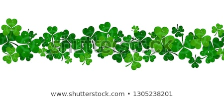 green paper shamrocks on white background Stock photo © dolgachov