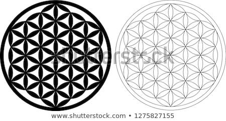 цветок жизни геометрия шаблон вектора серый Сток-фото © TRIKONA