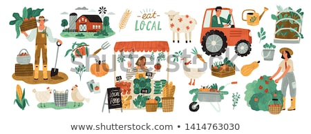Organic farm production set of agriculture people Stock photo © cienpies