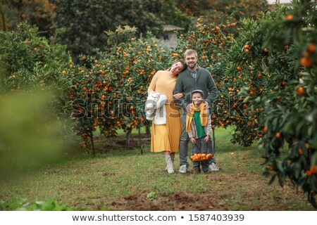 Mom dad and son are standing in their own garden of tangerine trees Stock photo © ElenaBatkova