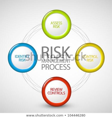ベクトル リスク管理 プロセス 図 サイクル スキーマ ストックフォト © orson