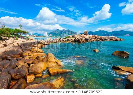 Steen tuin Vietnam zomer dag strand Stockfoto © bloodua