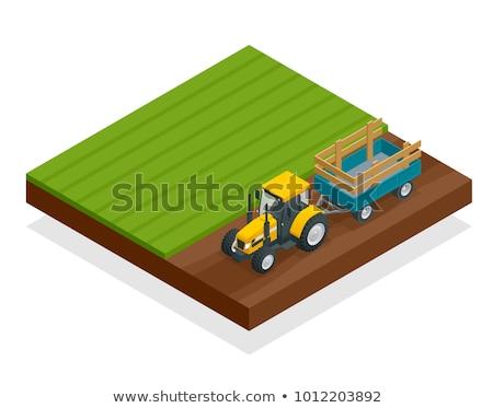 Agrarisch vracht vrachtwagen isometrische icon vector Stockfoto © pikepicture