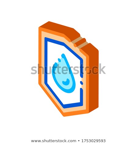 Waterproof Material Guard isometric icon vector illustration Stock photo © pikepicture