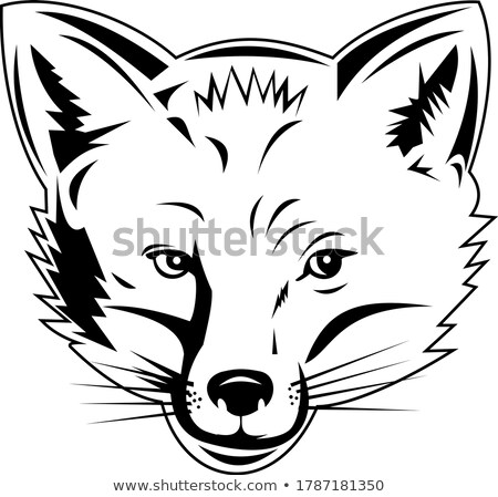 Red Fox Head Viewed from Front Retro Black and White Style Stock photo © patrimonio