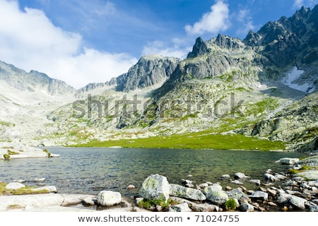five spis tarns high tatras vysoke tatry slovakia stock photo © phbcz