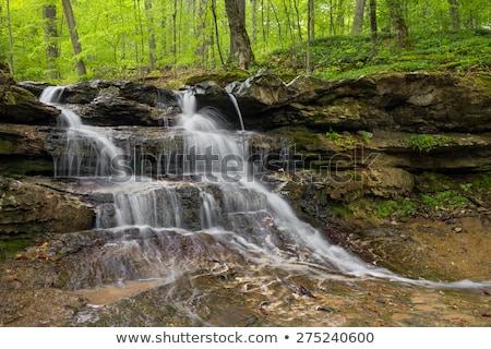 falling water in little waterfall in water spring Stock photo © lunamarina