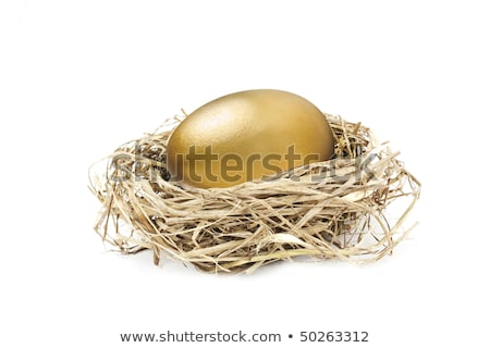 Wealthy Nest Egg Stock photo © AlphaBaby