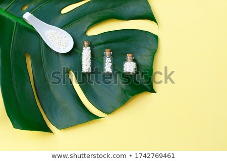 Palm зеленый таблетки белый счастливым Сток-фото © dolgachov