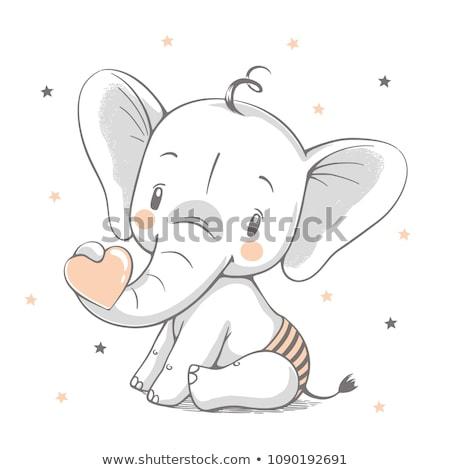 Elefante bebé caminando Foto stock © timwege
