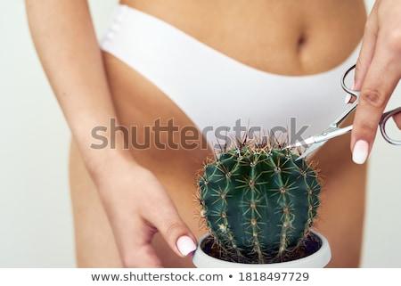 Meghitt klasszikus stílus meztelen női közelkép Stock fotó © dolgachov