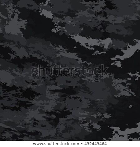 Kamuflaż wojskowych oka ludzi twarz Zdjęcia stock © Lightsource