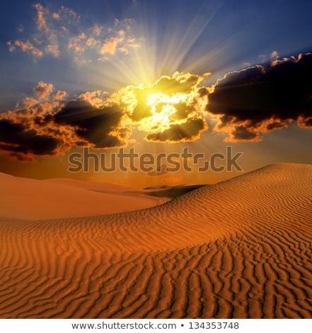dramatisch · landschap · woestijn · bewolkt · zon · zonsondergang - stockfoto © Mikko