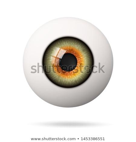 Ogen 3D grijs gezicht Stockfoto © mastergarry