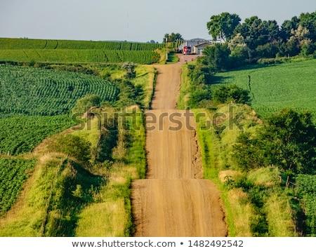 Айова трактора работу урожай кукурузы Сток-фото © actionsports