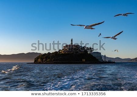 島 · サンフランシスコ · 米国 · 空 · 建物 · セキュリティ - ストックフォト © lunamarina