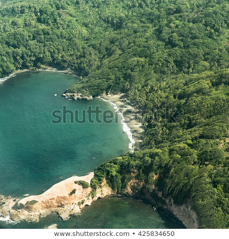 aerial of jungle, coast and ocean in Dominica Stock photo © meinzahn