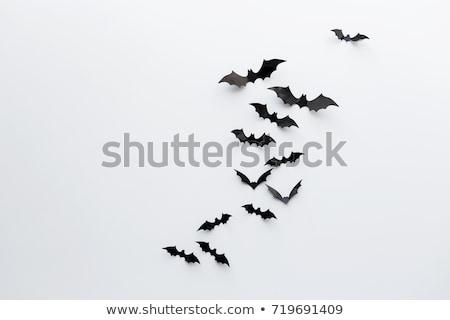 halloween concept set stock photo © genestro