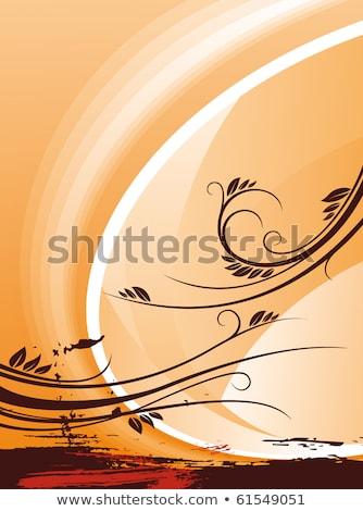 Кора · сосна · текстуры · дерево · природы · лет - Сток-фото © klinker