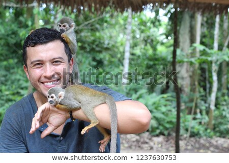 funny monkeys in the jungle Stock photo © adrenalina