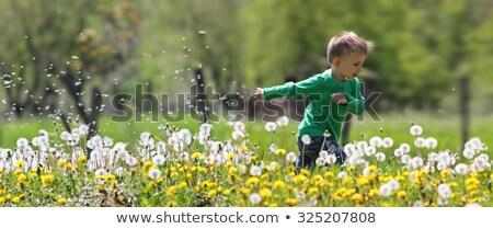 gyerek · fut · vidék · mosolyog · imádnivaló · szőke · nő - stock fotó © LightFieldStudios