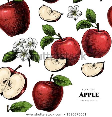ayarlamak · bağbozumu · etiketler · meyve · fındık · meyve - stok fotoğraf © barsrsind