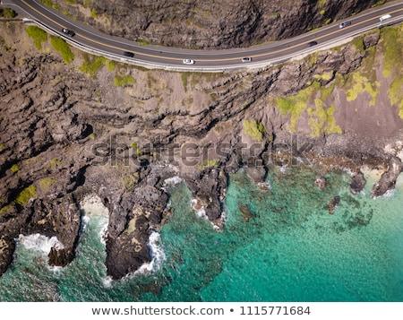 Plaj Hawaii keyifli yüzme doğa Stok fotoğraf © kraskoff