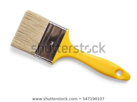 paint brush isolated on white background stock photo © bozena_fulawka