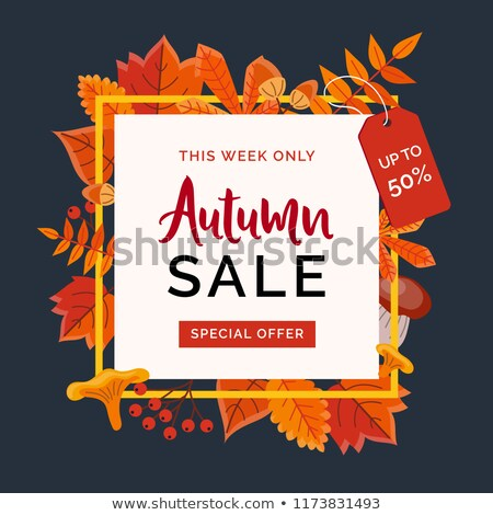 Autumn sale banner Vector flat style. Fall seasonal discount bro Stock photo © frimufilms