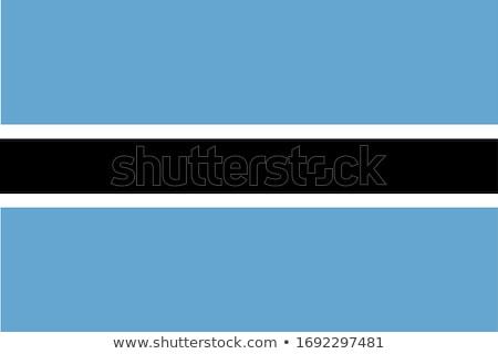 Botswana flag, vector illustration on a white background Stock photo © butenkow