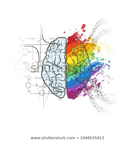 Techniques art cerveau blanche Photo stock © evgeny89