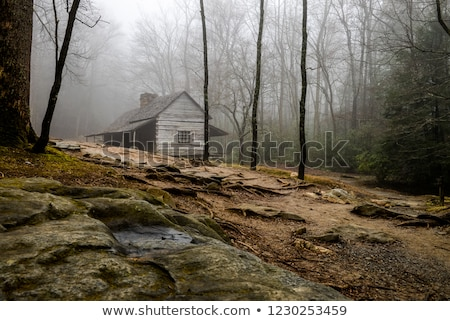 old settlers cabin in the forest Stock photo © clearviewstock