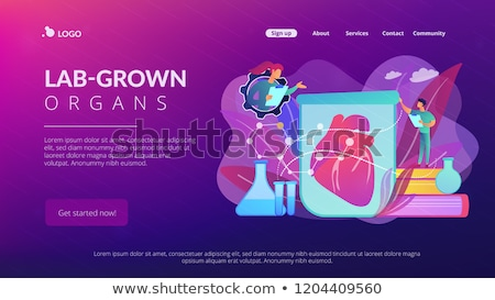 Lab-Grown Organs landing page concept Stock photo © RAStudio
