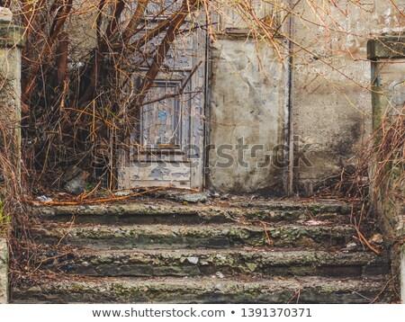 лестницы · двери · каменной · стеной · старые · текстуры - Сток-фото © sirylok